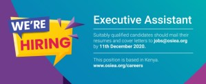 Read more about the article EXECUTIVE ASSISTANT Position at OSIEA