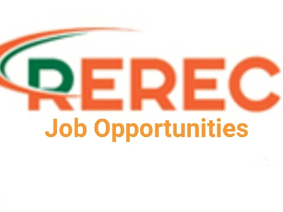 Read more about the article SENIOR SYSTEMS /FORENSIC AUDITOR, GRADE REREC 5 (1 POST)                        JOBS AT REREC (The Rural Electrification and Renewable Energy Corporation) Formerly; The Rural Electrification Corporation