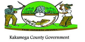 Read more about the article County Government of Kakamega Job Vacancies: Clerical Officers III (Data Clerks), Job Group CPSB 13 (14 Posts)