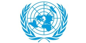 Read more about the article United Nations (UN) Careers: Senior Administrative Officer, P5